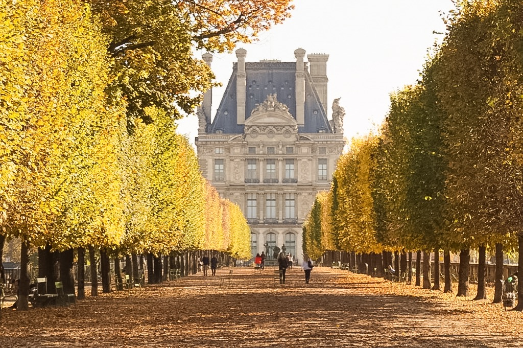 paris-autumn-tuileries