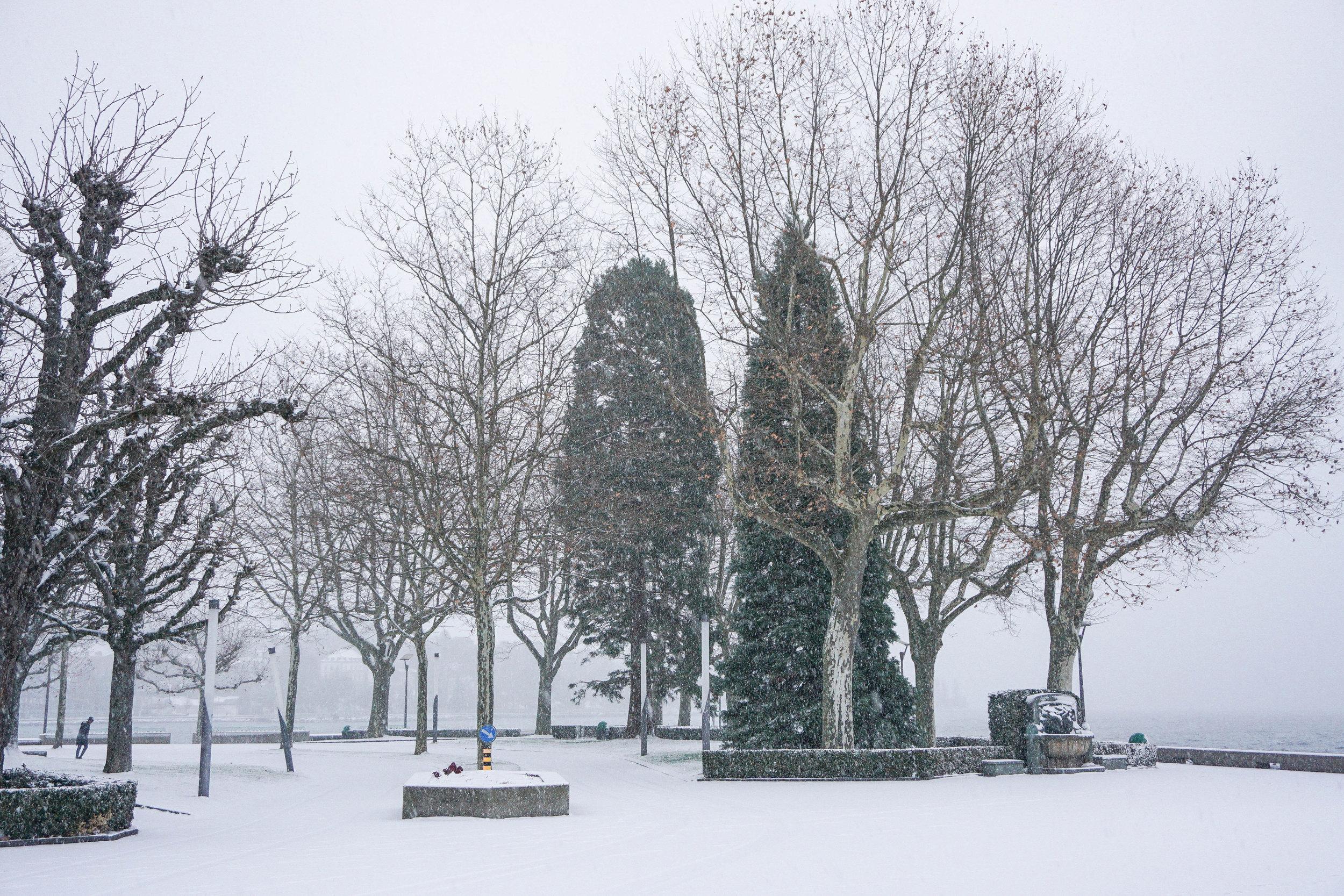Lausanne-Lake snow