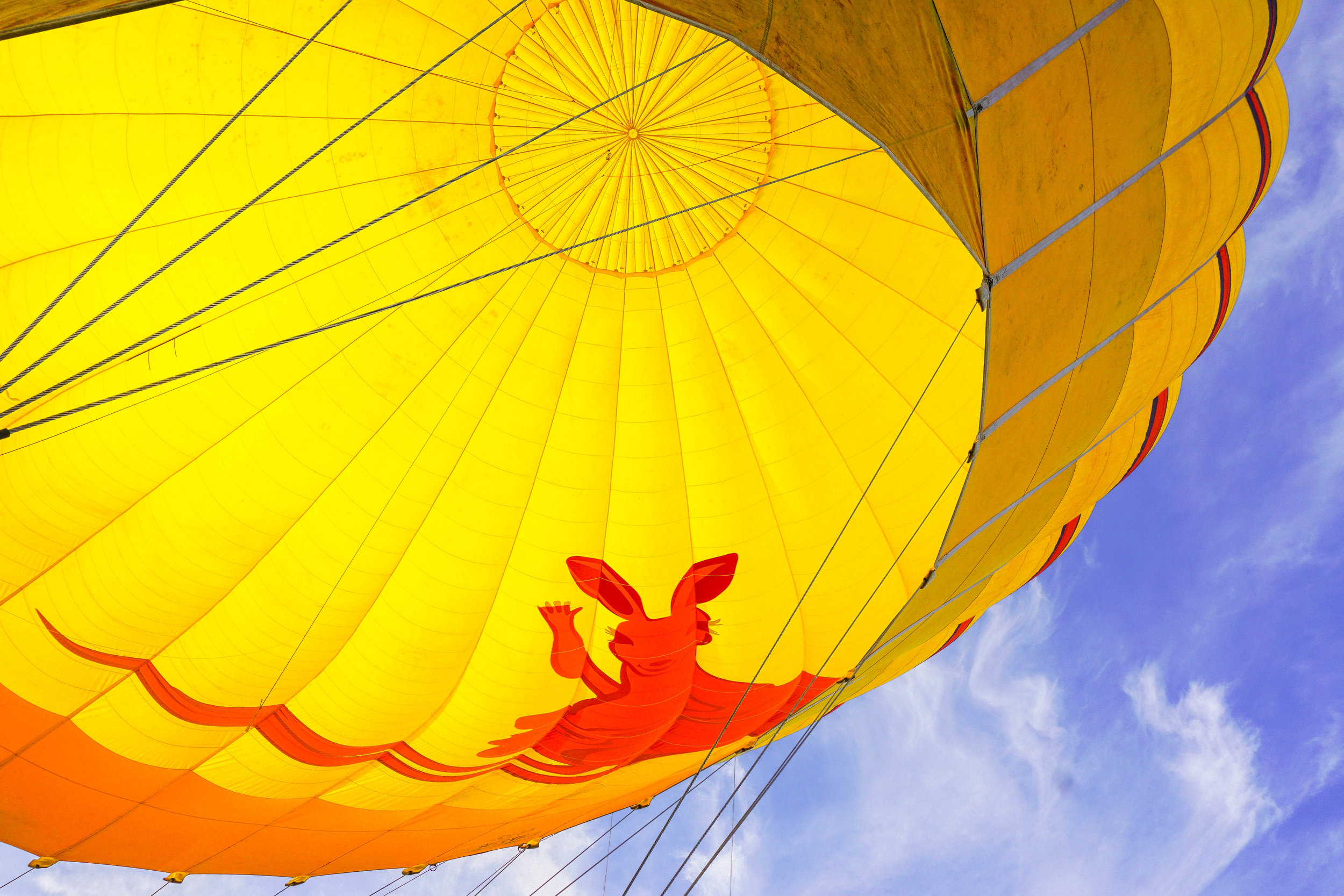 Australia - Hot Air Balloon Cairns