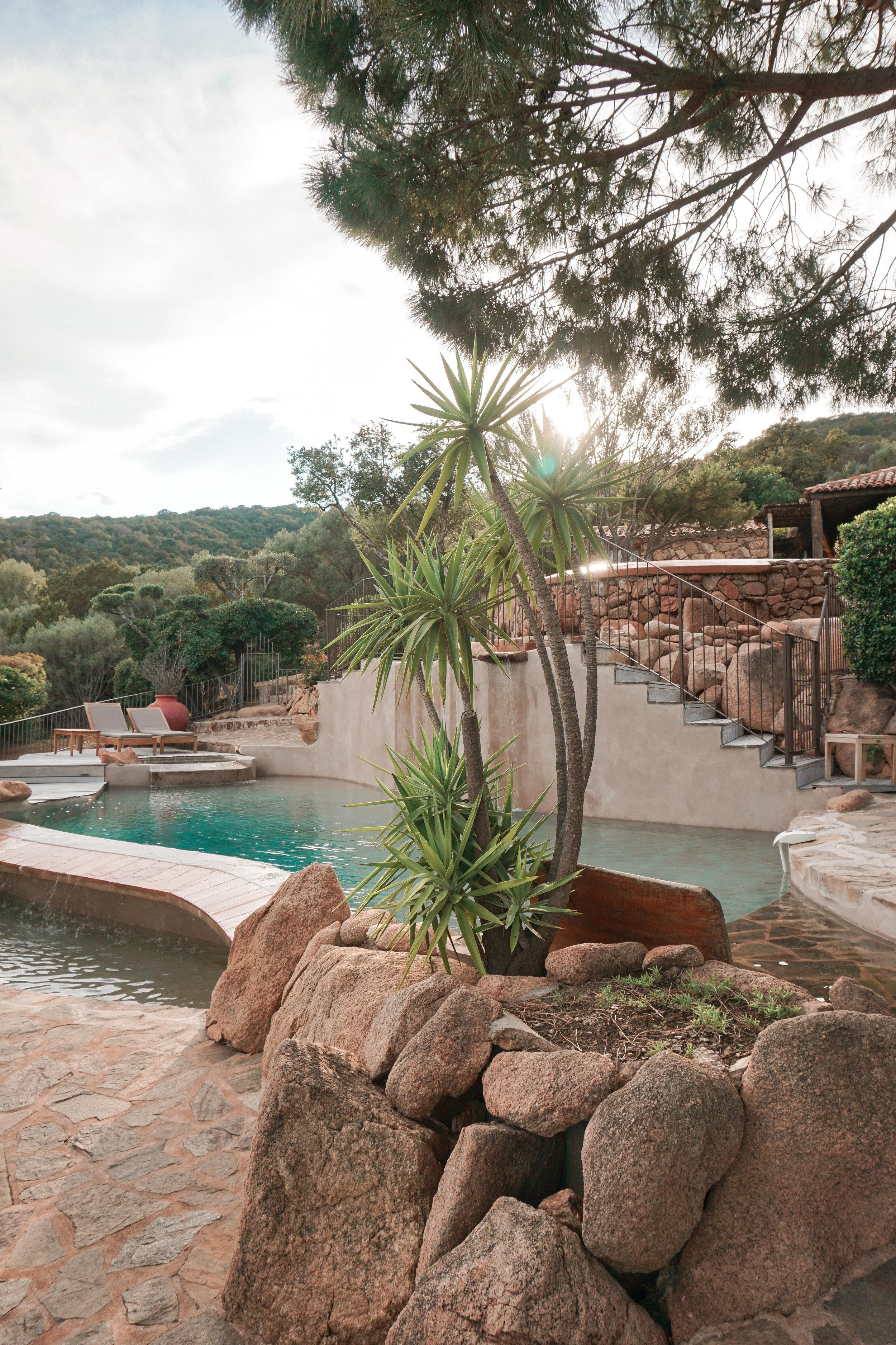 Les Oliviers de Palombaggia - Pool