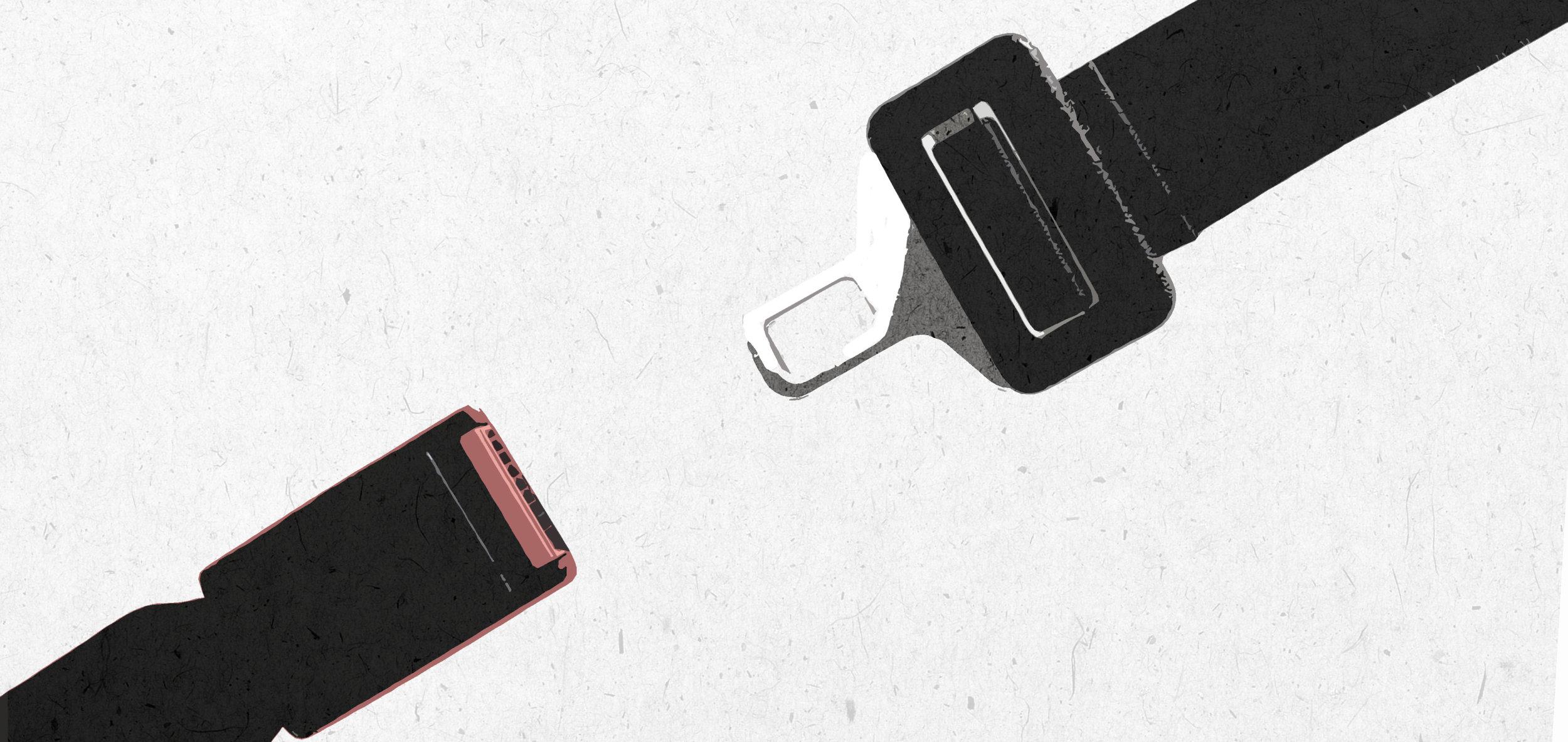 car accident seatbelt law