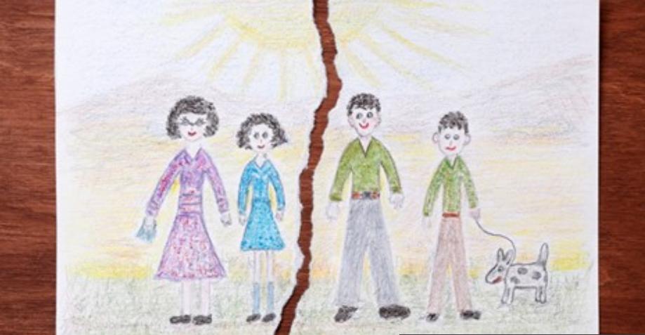 family pet new orleans divorce law