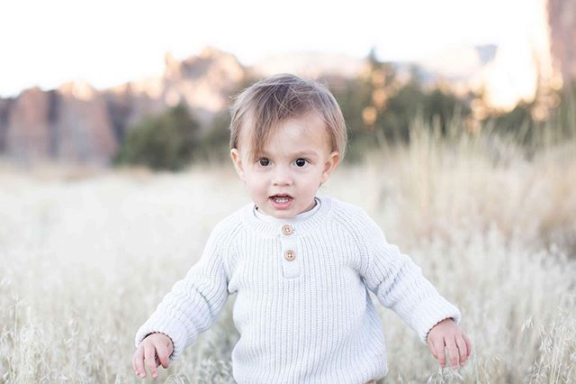 Pretty sure I'll do every shoot here from now on. How cute is this little guy?! He loved exploring!