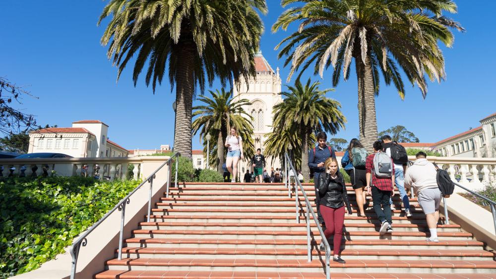 Daytripper University USF (9 of 12).jpg