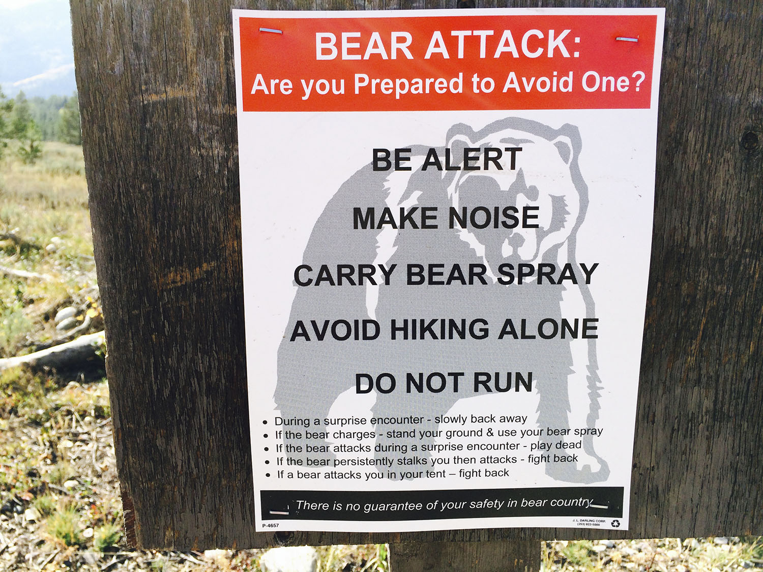 Bear Safety Information Garbage Kills Bears! Keep your food with you at ALL Times.