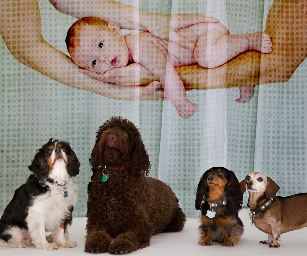 martina_machackova_photograpy_portraits_babies_maternity-34.jpg