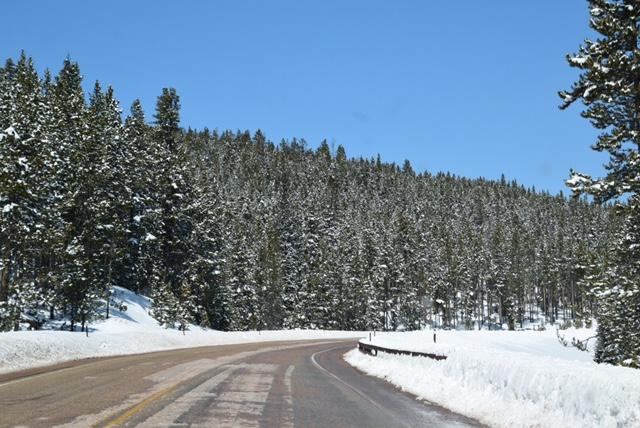 Things to do in Billings, Montana (4).JPG
