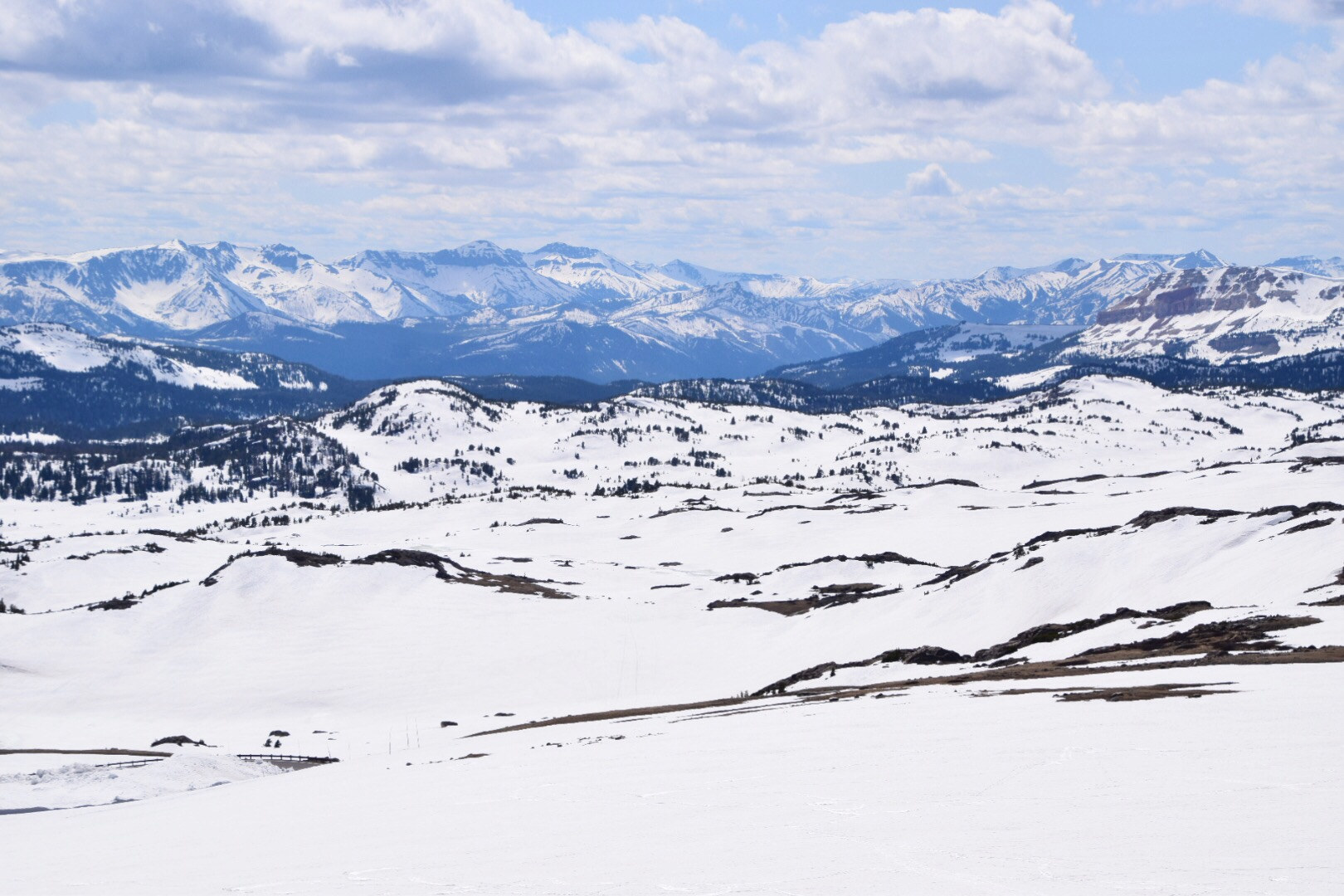 Guide to Yellowstone National Park June (43).JPG