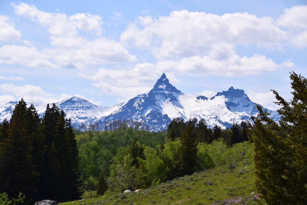 Guide to Yellowstone National Park June (42).JPG