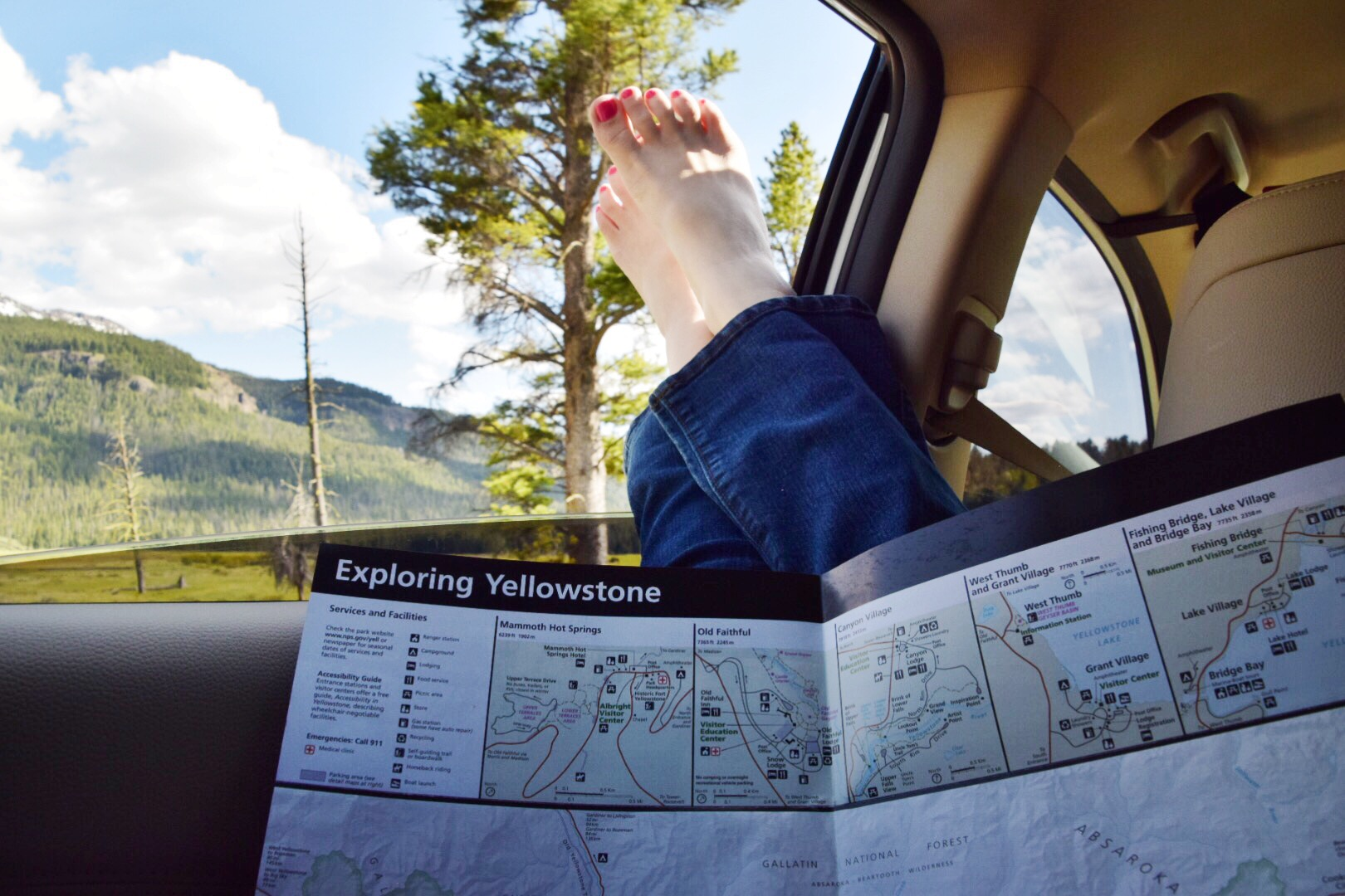Guide to Yellowstone National Park June (36).JPG