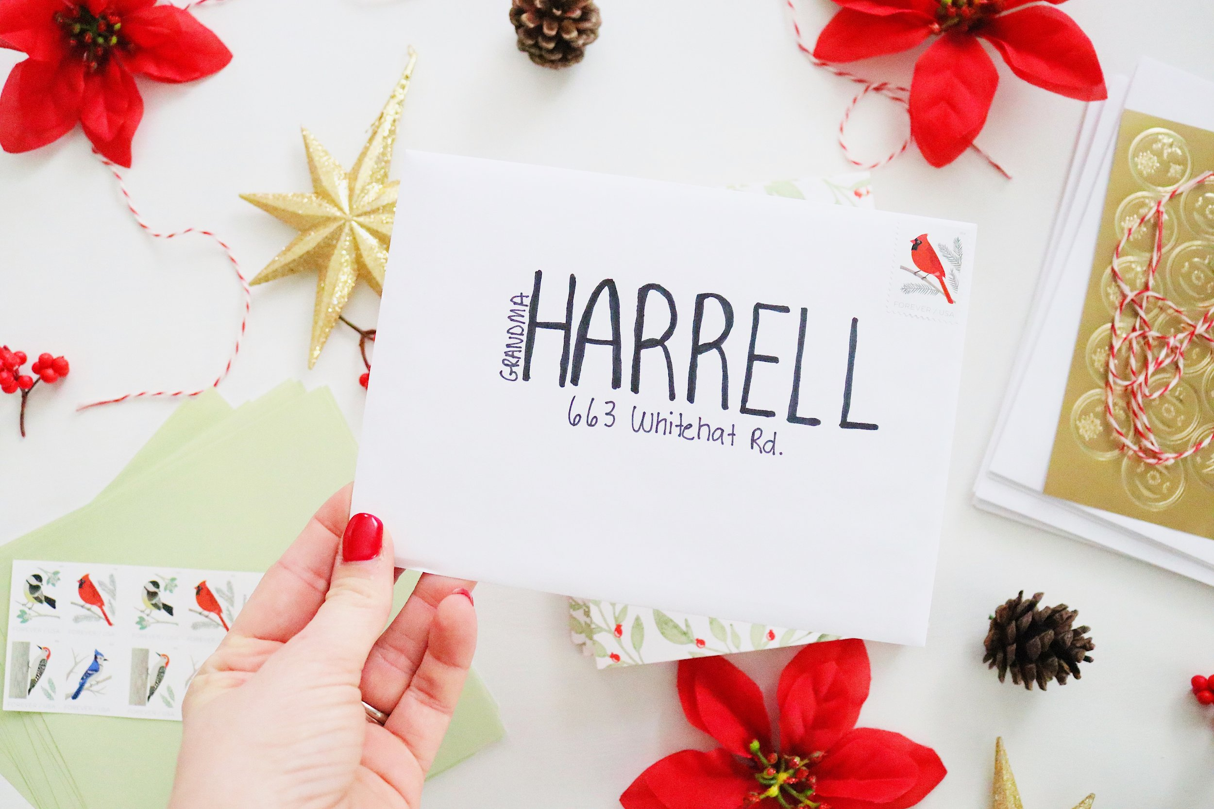 Wander Dust Blog - 4 Tips You Should Know Before Sending Holiday Cards - Basic Invite - Beautiful Christmas Cards (3).JPG