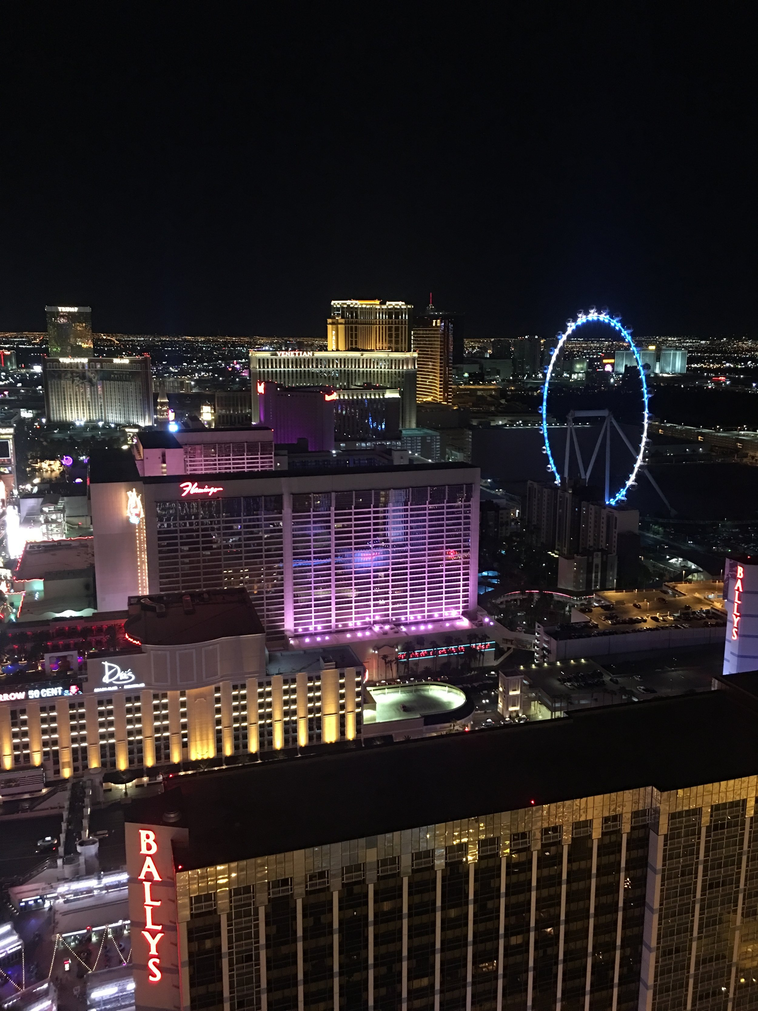 Best Travel Guide to Las Vegas - Things to do in Las Vegas - Blogger Sarah J (6).JPG