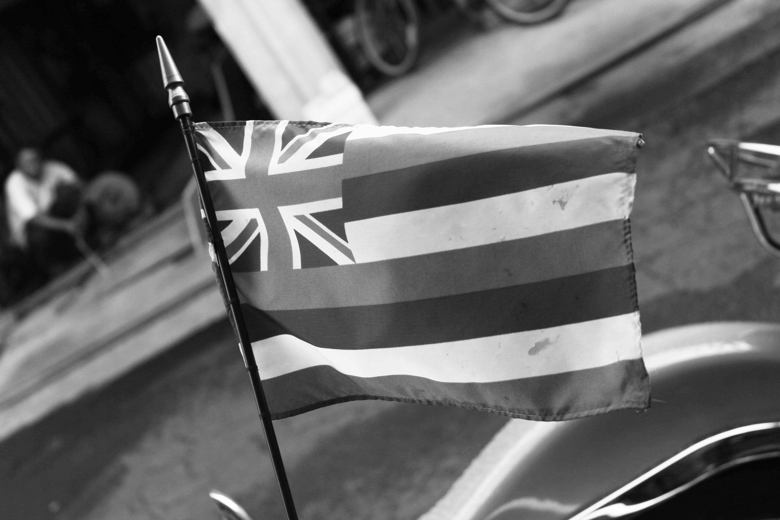 hawaiian flag bw IMG_0992 copy.JPG