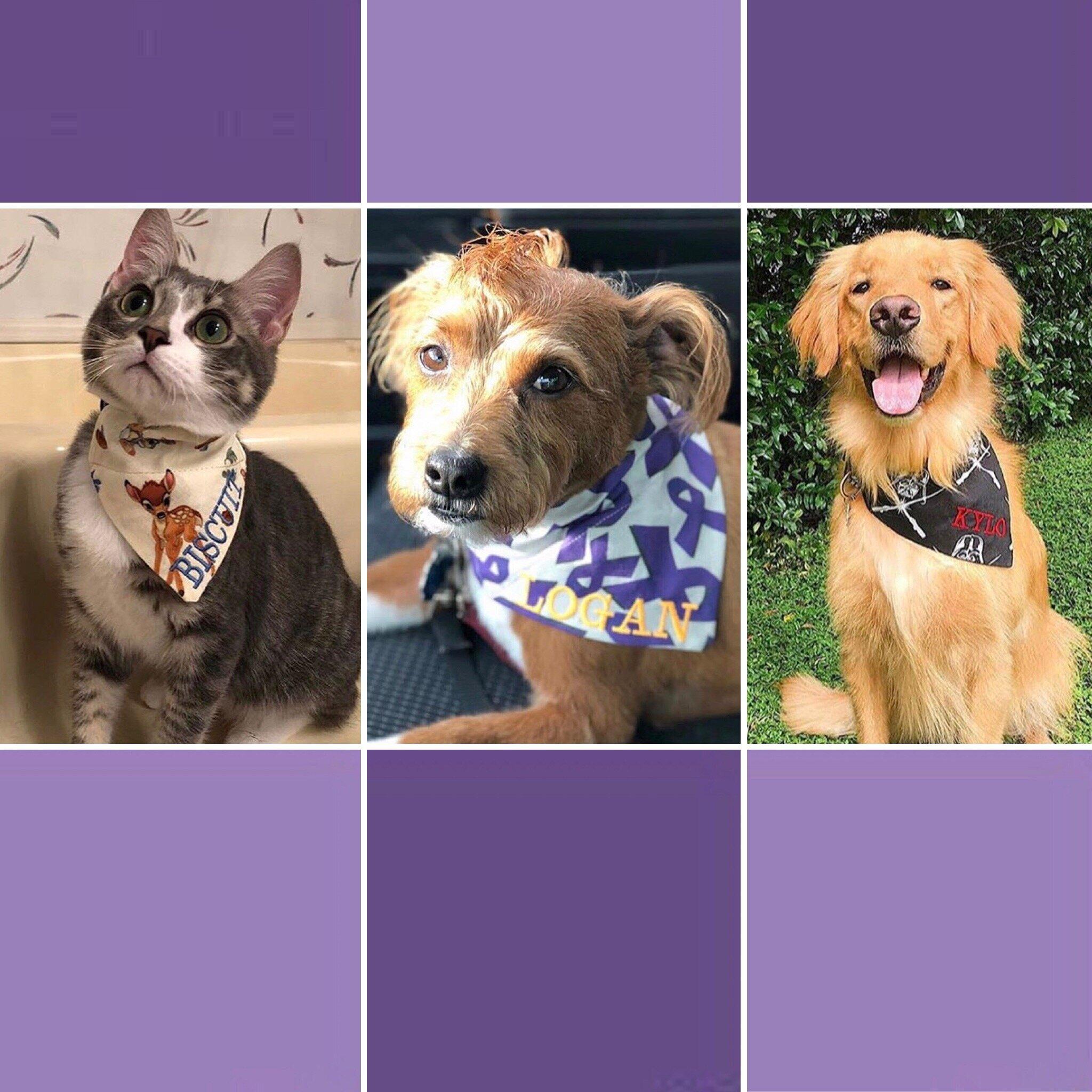 Yellow Dog Bandana Floral Dog Bandana Personalised Custom Dog Bandana Dog Accessories UK Dog Bandana Daisies Dog Neckerchief