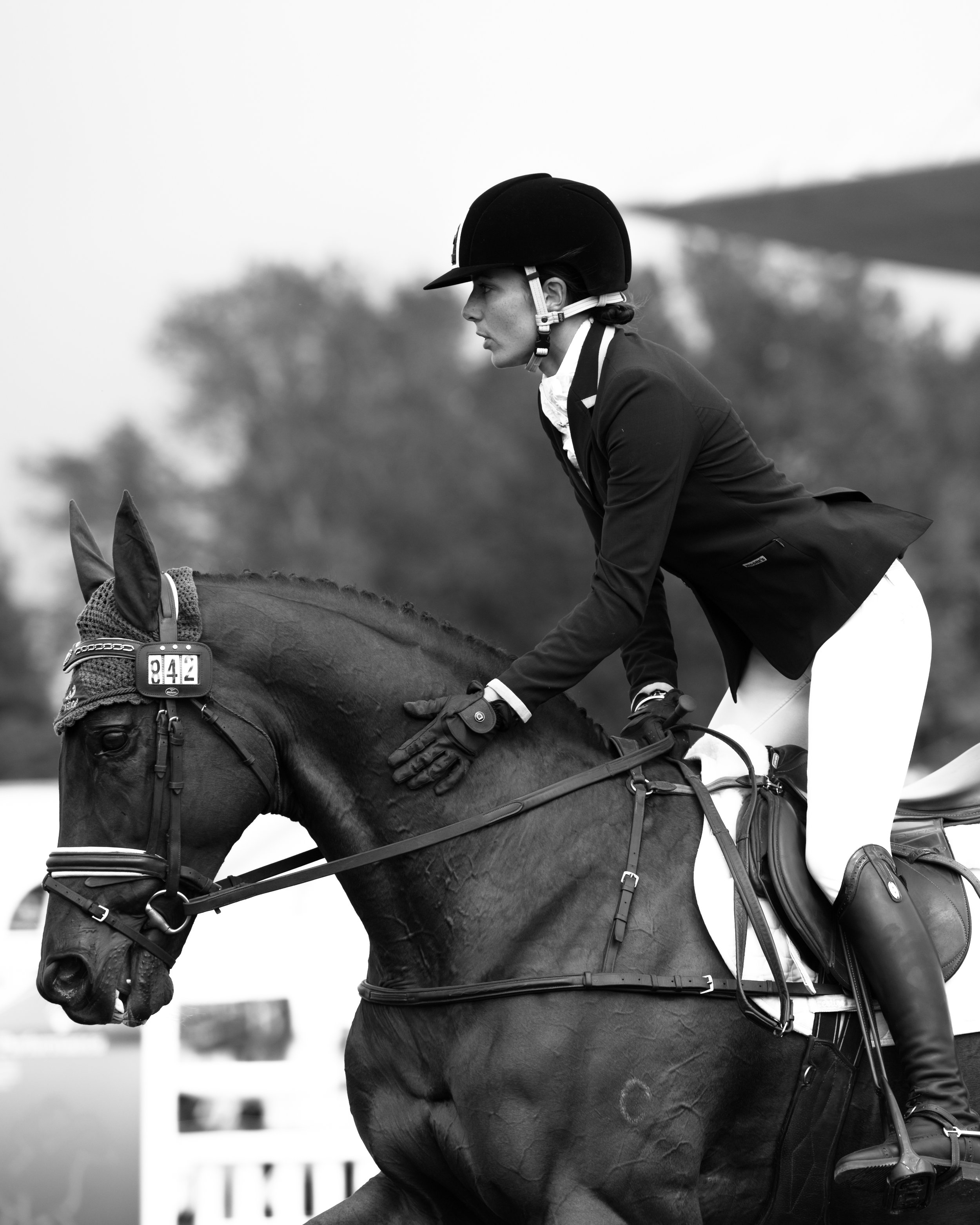 Amanda Pottinger:  Eventing Hawkes Bay, NZ