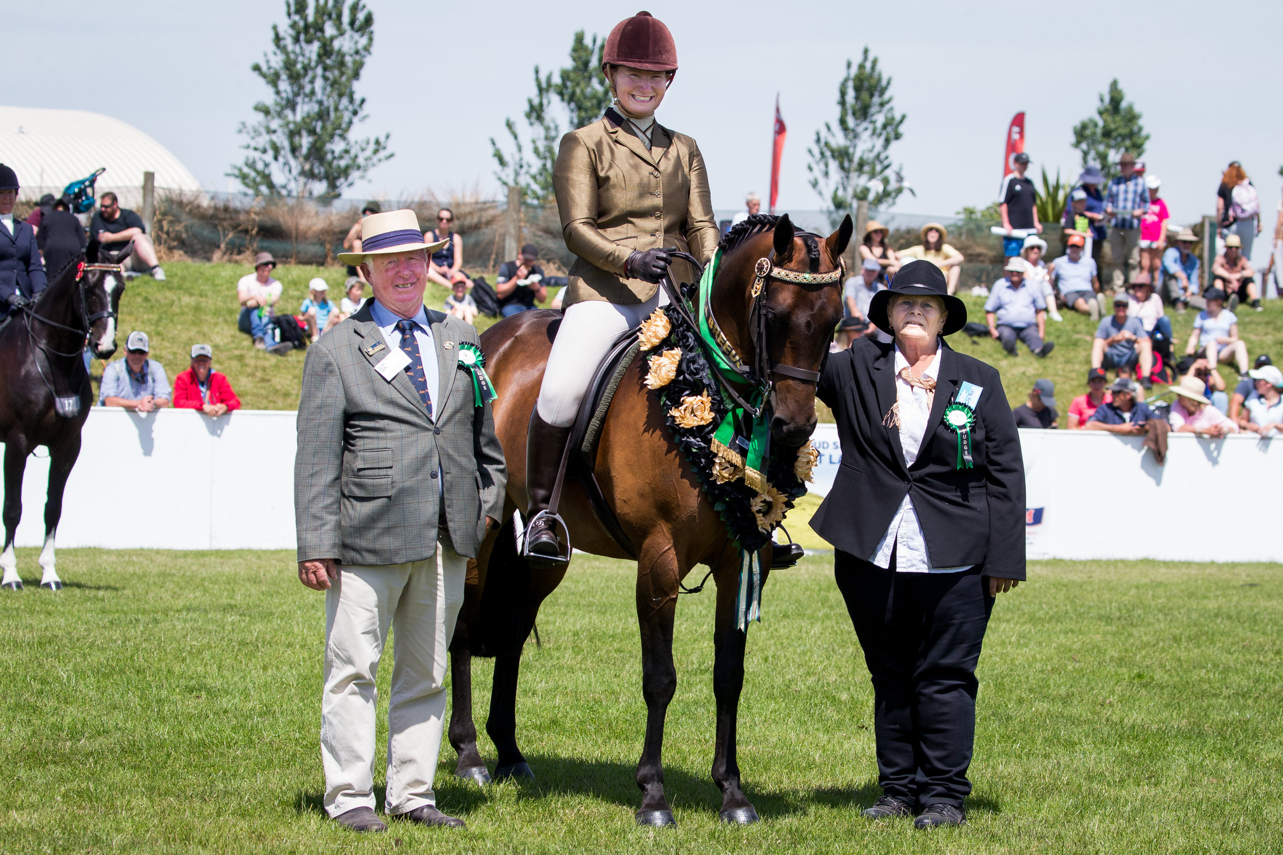Dani Simpson:  Showing & Dressage Canterbury, New Zealand
