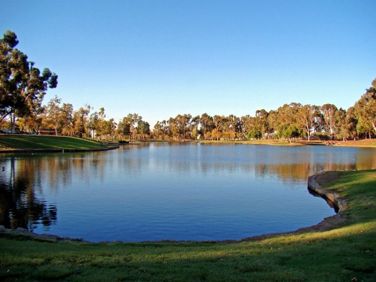 Photo of a beautiful afternoon at Tri City Park in Placentia from  smugmug.com