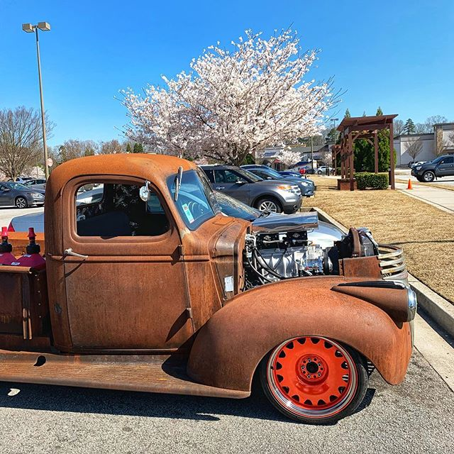 It feels good to go for a ride in the beast again ✨  #chevy #cherryblossom #spring #1941 #beast