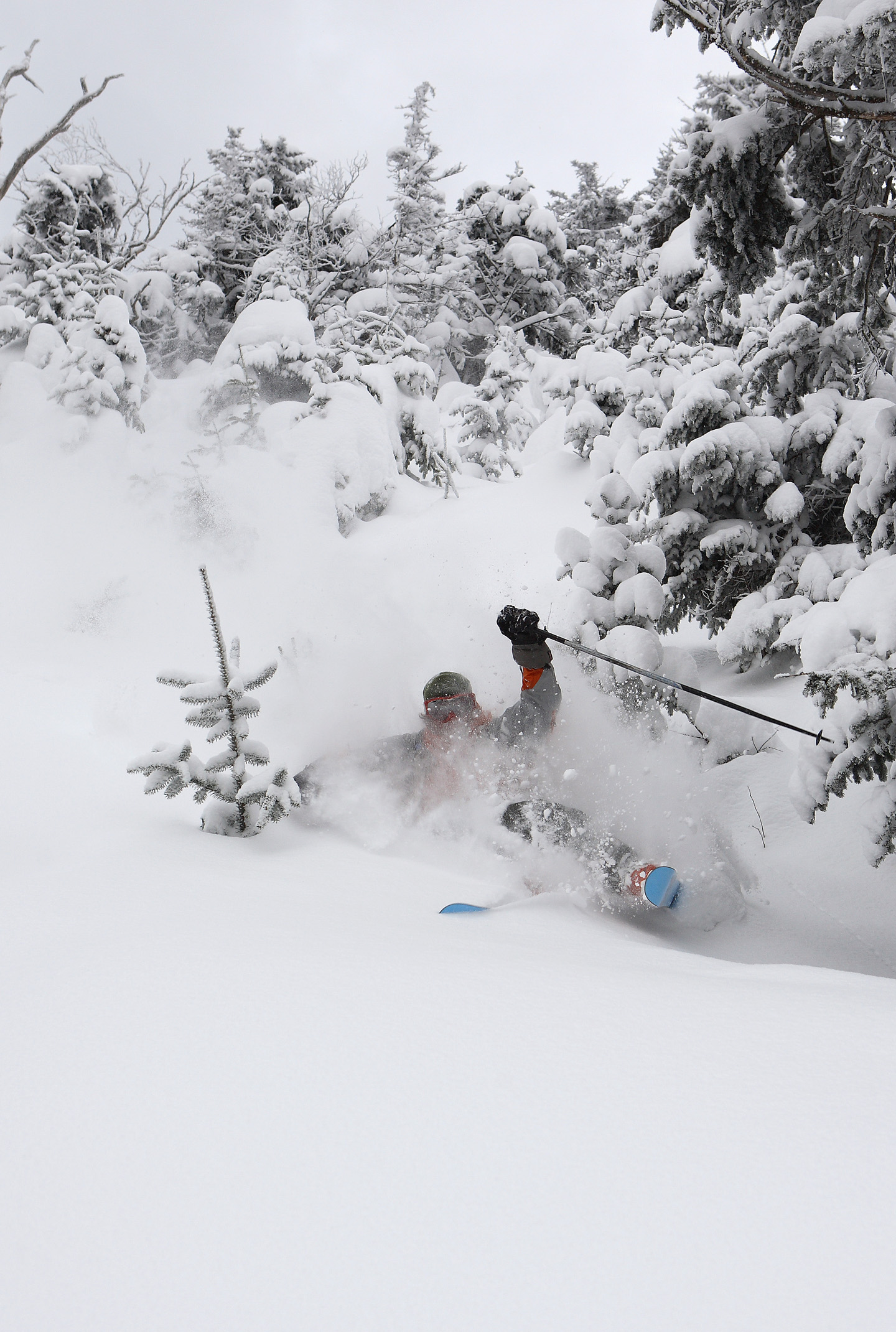 Skiing powder at Mad River Glen  Photo: Courtesy of Mad River Glen