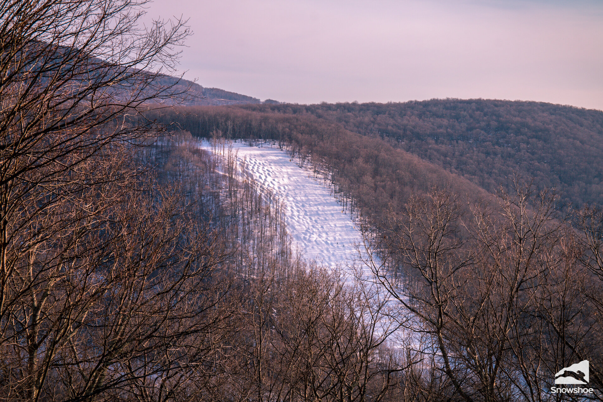 Lower Shay's Revenge in all of its bumped up glory - Photo provided by Showshoe Mountain.