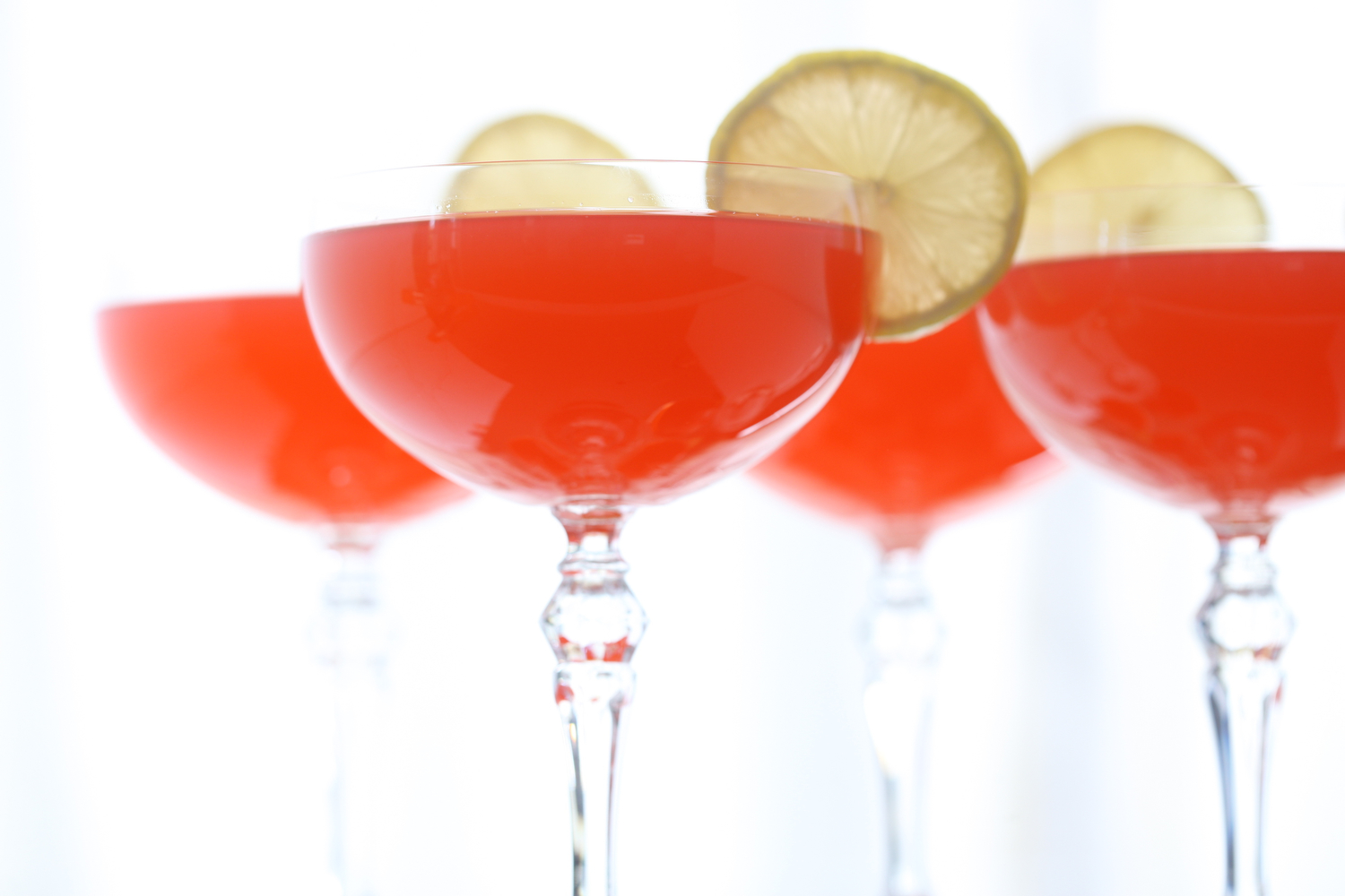 Cocktails_2016MaryMargaretChambliss050.JPG
