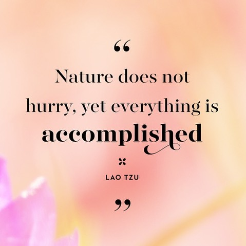 So true, to #pilates as well as any pursuit. Easy to know, harder to live by! Wishing everyone had joyful #spring holidays, soaking in the renewal and new life the season brings