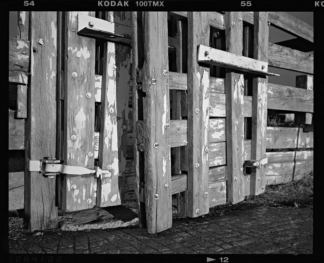 Bozeman Stockyards, Bozeman, Mt.