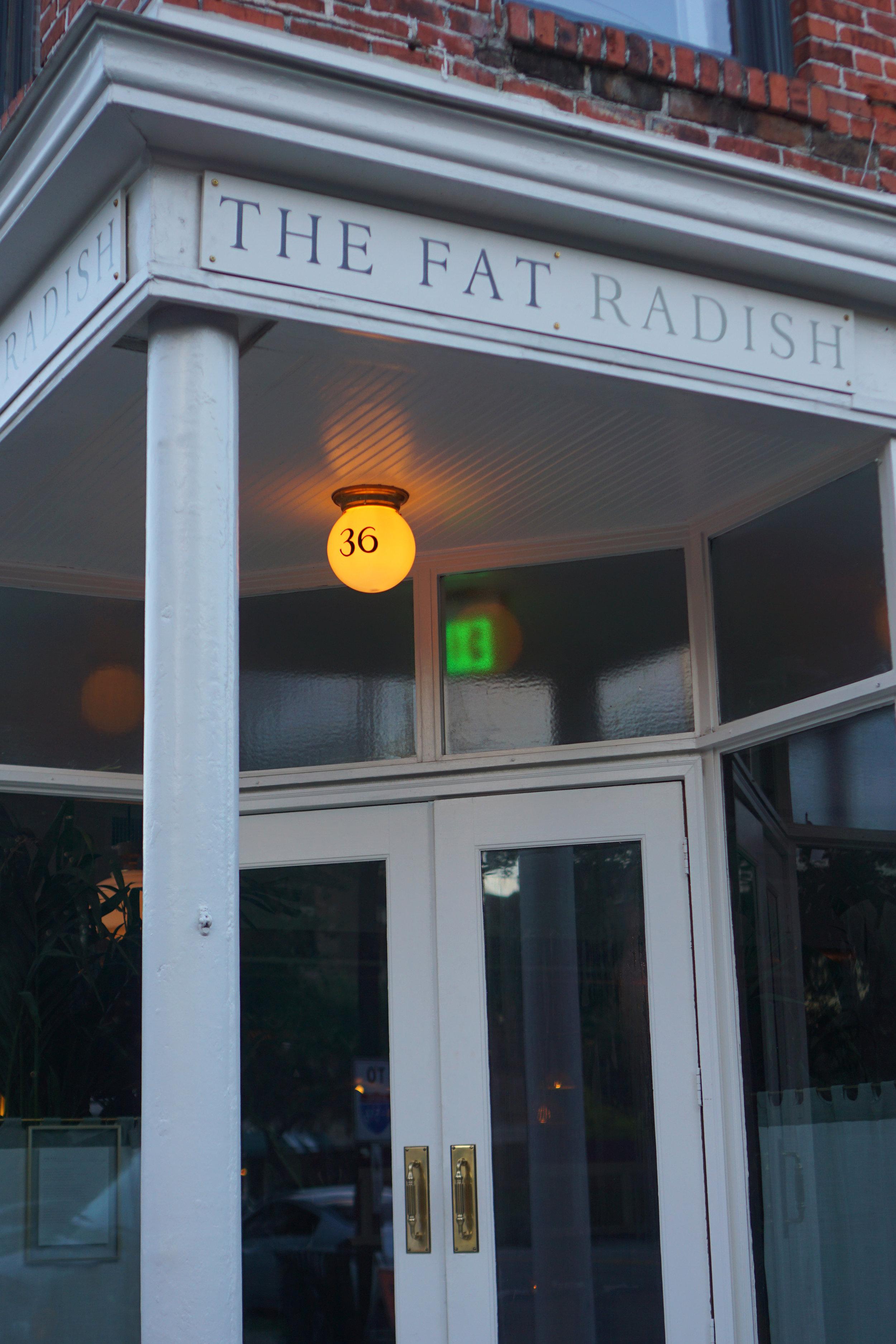 fat-radish-07.jpg
