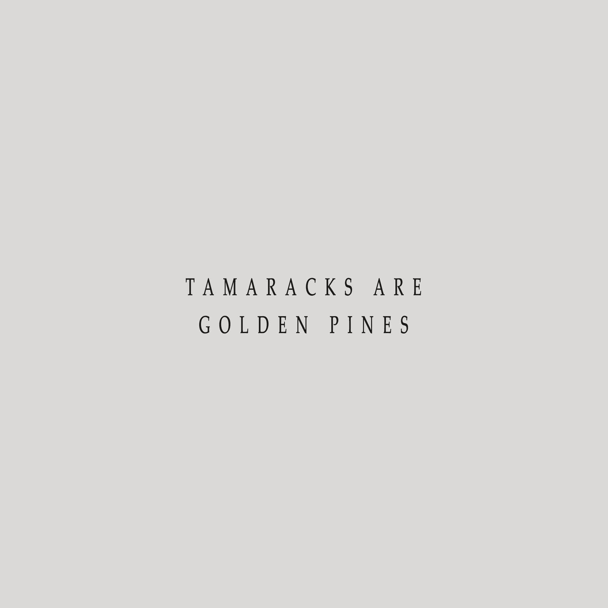 TAMARACKS.jpg