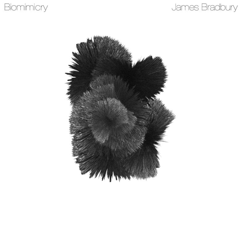Biomimicry   James Bradbury