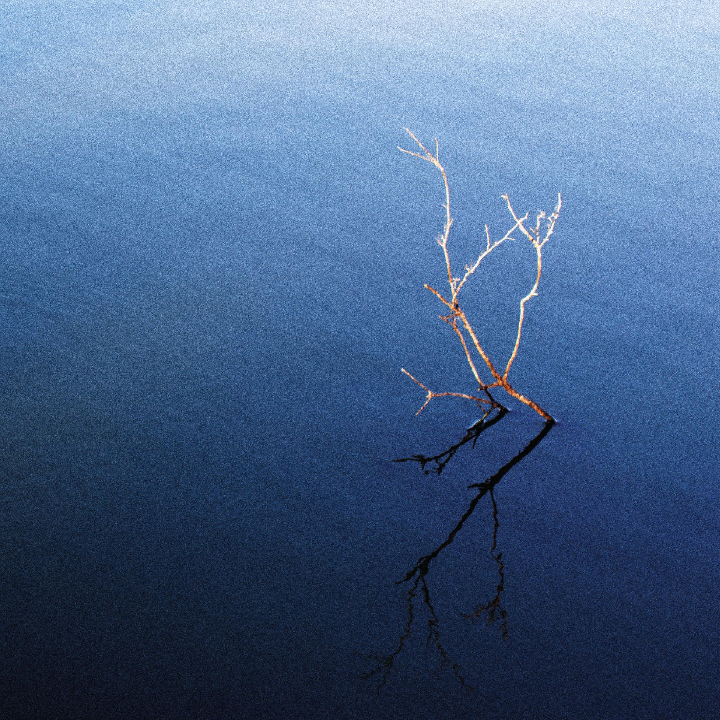 Lakes   Lee/Cossio/O'Connor