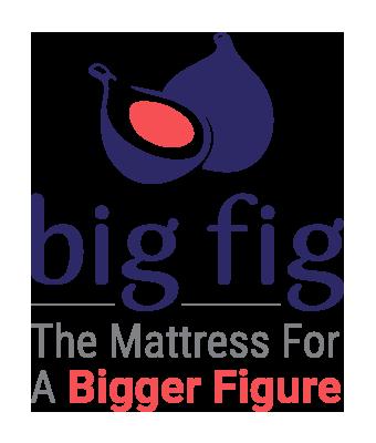 bigfig-logo-TransparentBG-stacked-DoubleSubline-medium.png