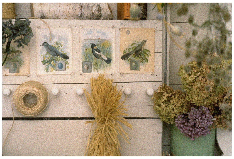 garden-room-2.jpg