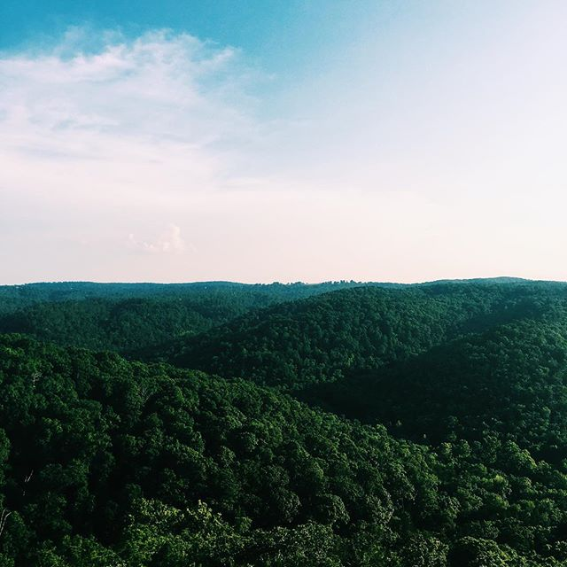 as far as ozark pics go I think this is like, baseline, but it is #meaningful. I'm highly 'fraid of heights in open air situations. Found this observation tower and I was like heck it I'm doing it anyway. Got halfway up and couldn't deal, collected myself & shed some garments then tried again. With Chance the Rapper and God as my witnesses I got to the top deck and my knees almost gave out. Coming down was about a trillion times worse and the largest spider I've ever seen wouldn't leave me alone but ALL THAT ASIDE I did something that scared me today and got a mad decent phone background out of it 🤗