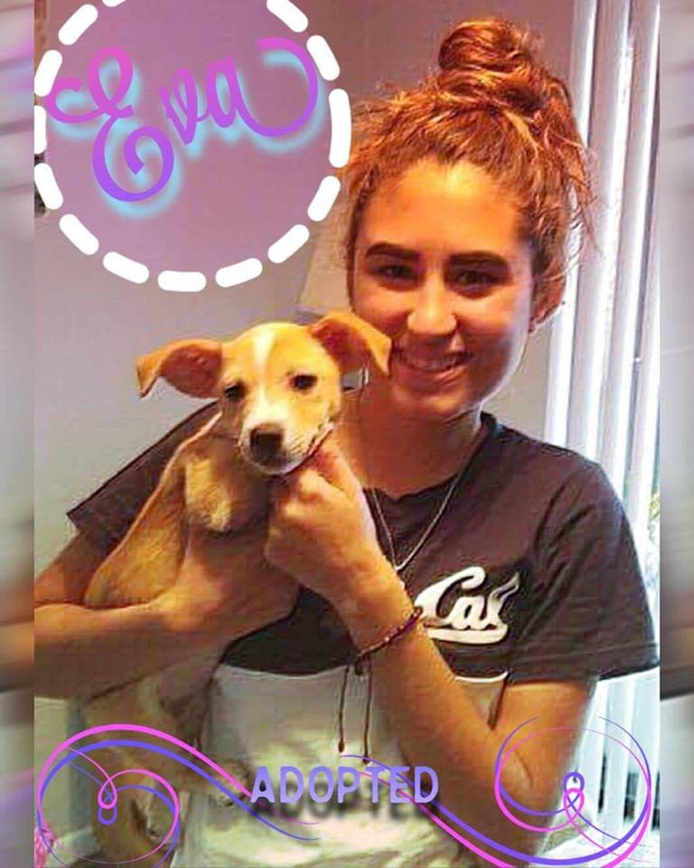 Eva Adoption Pic.jpg