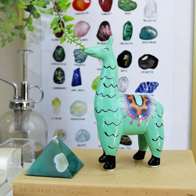 Is it a llama or alpaca? I really can't tell the difference, but isn't it too cute. ⠀⠀⠀⠀⠀⠀⠀⠀⠀⠀⠀⠀⠀⠀⠀⠀⠀⠀⠀⠀⠀⠀⠀⠀⠀⠀⠀⠀⠀⠀⠀⠀⠀⠀⠀⠀⠀⠀⠀⠀⠀⠀⠀⠀⠀⠀⠀⠀⠀⠀⠀⠀⠀⠀⠀⠀⠀⠀⠀⠀⠀⠀⠀⠀⠀⠀⠀⠀⠀⠀⠀⠀#interiordesign #interiors #homewares #homestyle #homedecor #interiorstyling #colourmehappydecorating #myhomestyle #interiordecorating #homeinspo #interiorinspo #beautifulhomes #interior4all #designinteriors #roomforinspo #apartmenttherapy #interior2you #interiorstylist #kmartaus