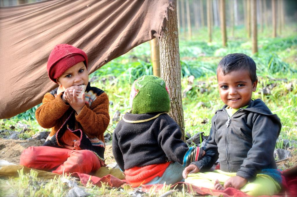 Organic Farmer's children sitting in the field