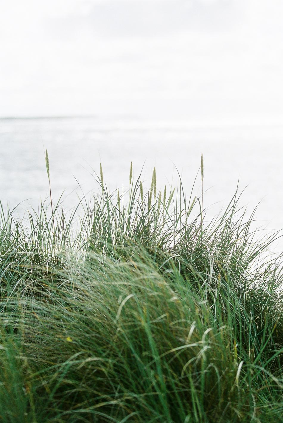 Chen-Sands-Film-Photography-Portraits-Engagement-Elopment-Ireland-3.jpg