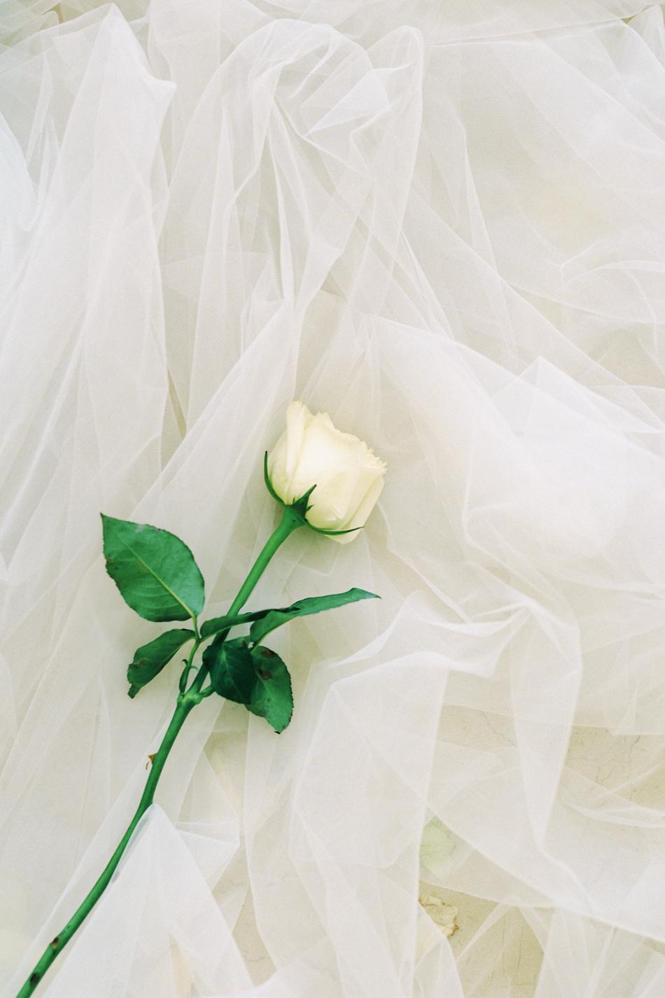 Chen-Sands-Film-Photography-Portraits-Boudoir-Bride-Beauty-9.jpg