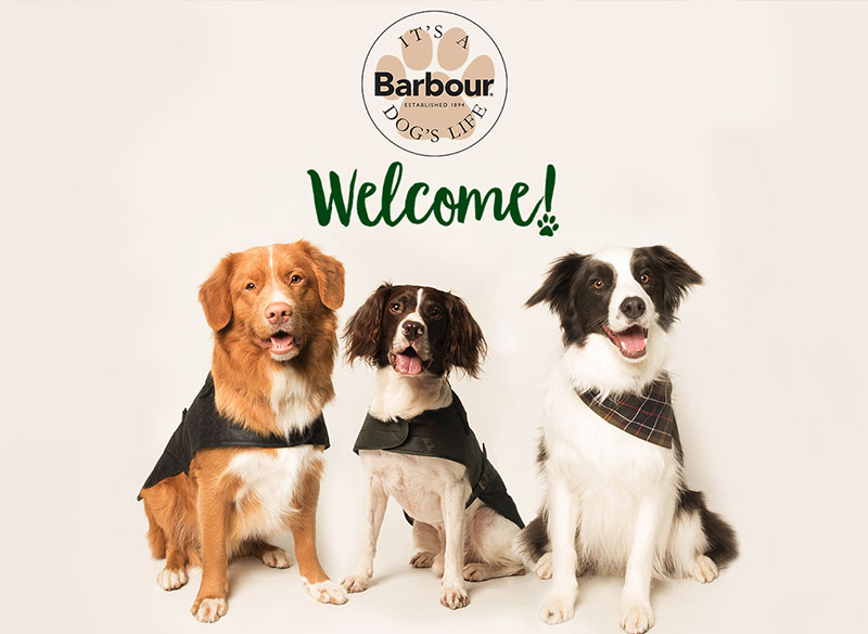barbour_dogs_life_123.jpg