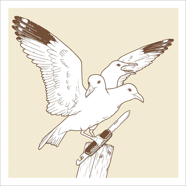 SIP 02: PREDATORY BIRD // ANDY MURPHY