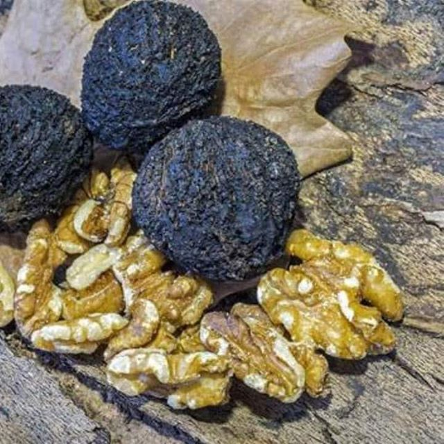 Black walnuts (Juglans nigra) are a popular superfood with various health benefits. Black walnut is effective against ringworm, tapeworm, pin or thread worm, and other parasites of the intestine. This is why black walnut makes a great addition to any parasite cleanse. #parasitecleanse #parasitecleansing #parasitecleanser #parasitecleansedetox #detoxification #detox #detoxprogram #detoxyourbody #detoxtime #detoxfood #guthealth #gutinflammation #guthealthmatters #guthealing #happygut #leakygut #healthygut  #coloncleanse #healthylifestyle #healthyhappylife #healthyimmunesystem #healthcoachbali #wellnesscoach #wellnessjourney #wellnessubud
