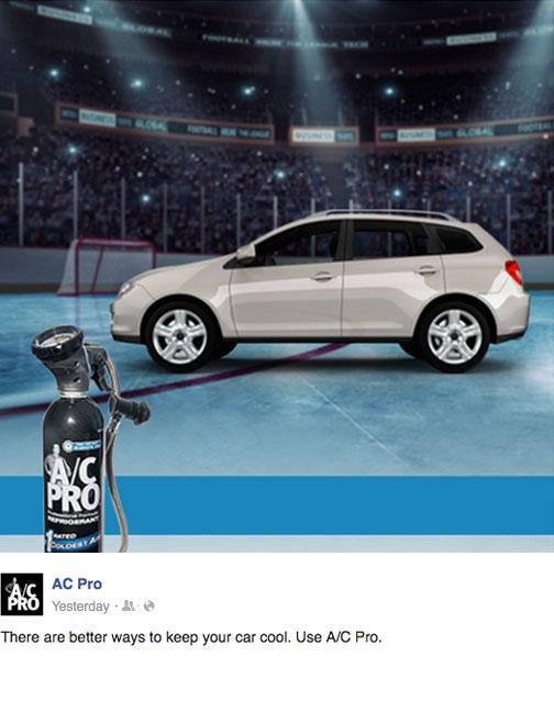 ACPRO_Icerink_5.jpg