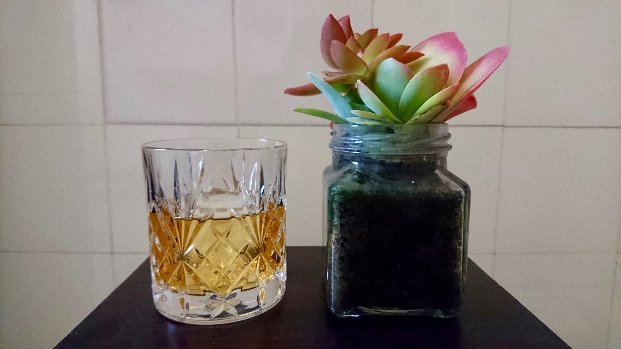 Whiskey and Succulent