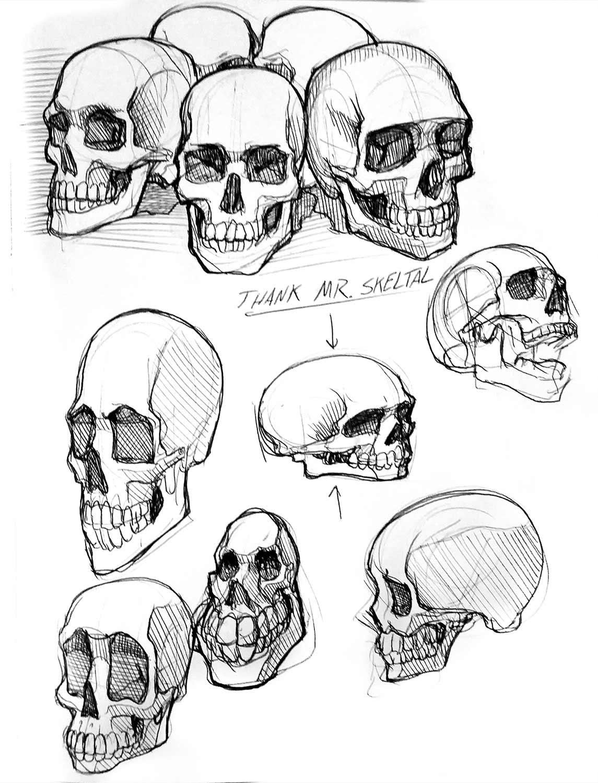 skulls_web.jpg