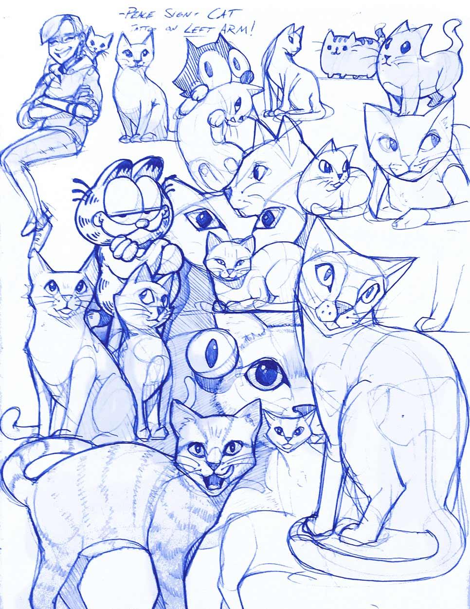 cats_web.jpg