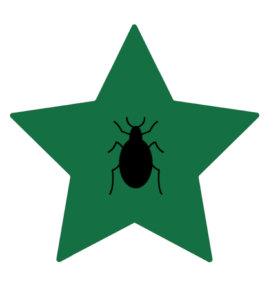 Bug All Star Image.jpg