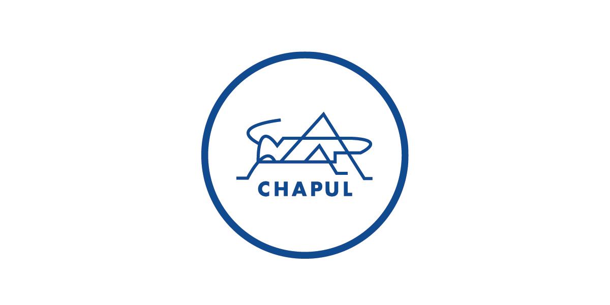 Chapul Logo.jpg