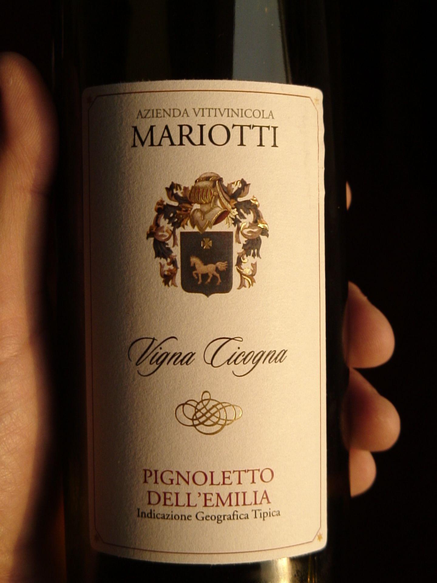Mariotti-Pignoletto-Villa-Cicogna.jpg