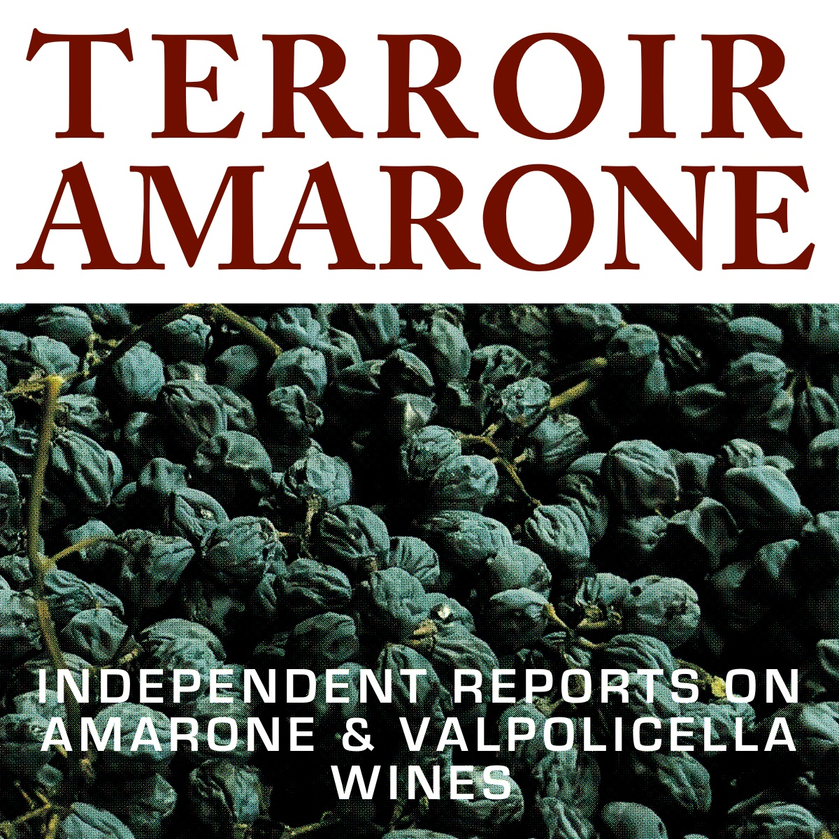 Terroir Amarone